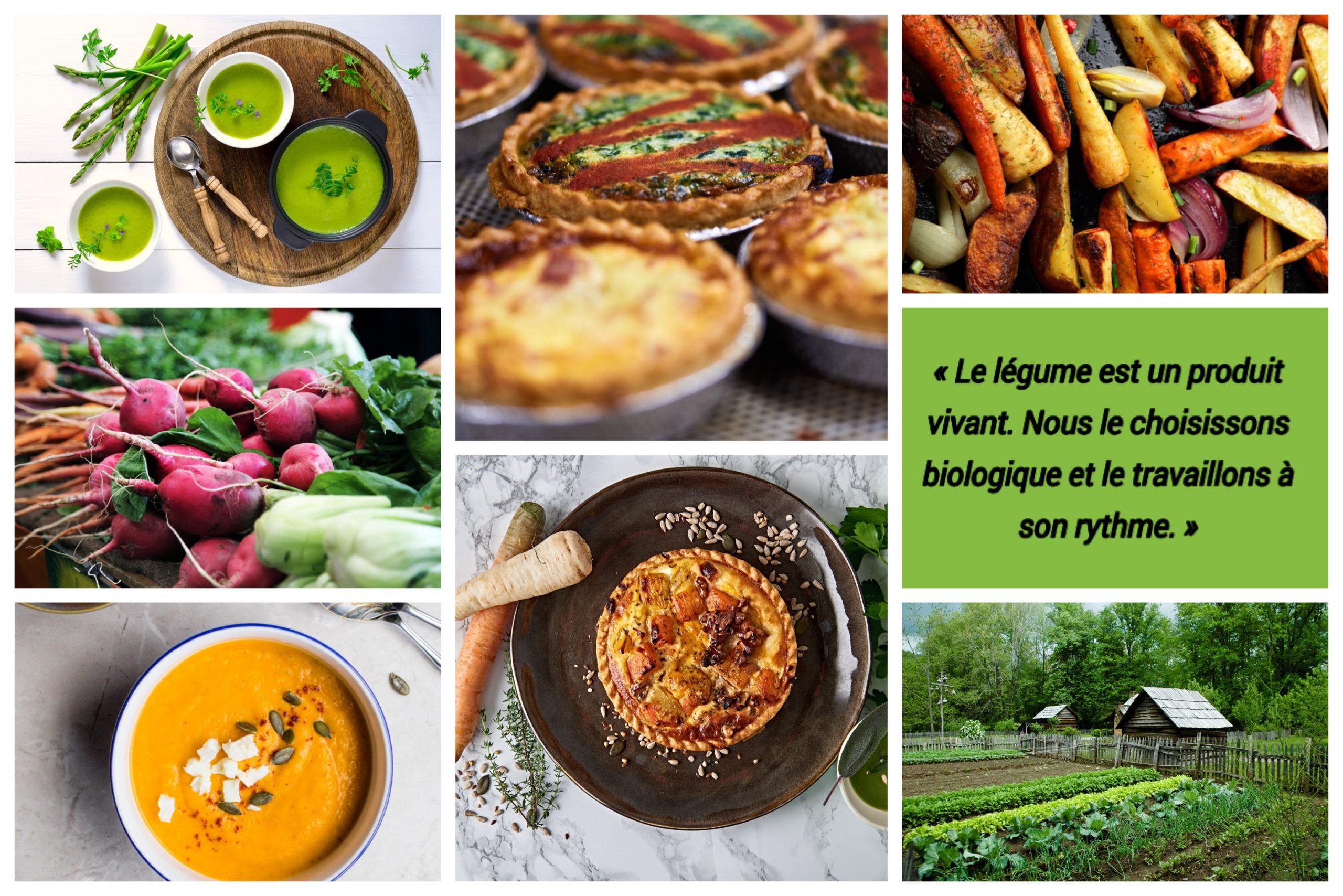 Quels sont les bienfaits des aliments bio ?